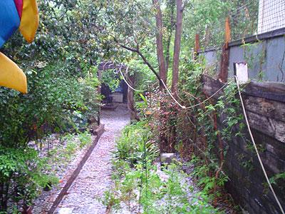 2004-11-13_gore-hail02.jpg