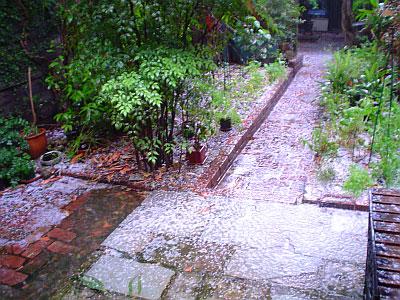 2004-11-13_gore-hail03.jpg