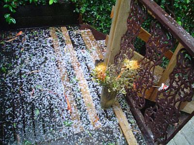 2004-11-13_gore-hail04.jpg