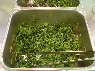 2005-08-11_food_01.jpg